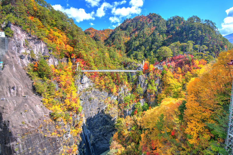 Nikko National Park excursion depuis Tokyo