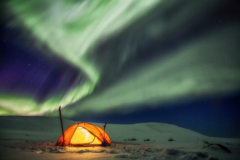 Northern lights - Day Trips from Reykjavik