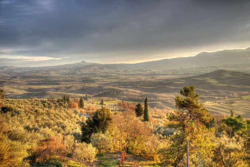 Pienza - Tuscany wine tours
