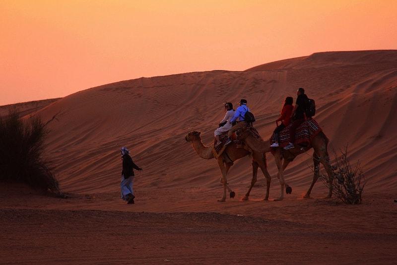 Safari en camello al atardecer en el desierto de Dubai