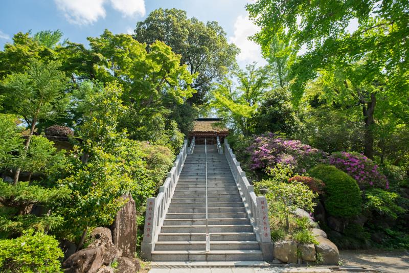 Takasaki excursion depuis Tokyo