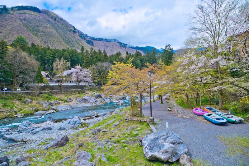 Tama river excursion depuis Tokyo
