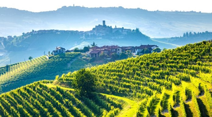 Tuscany Wine Tours