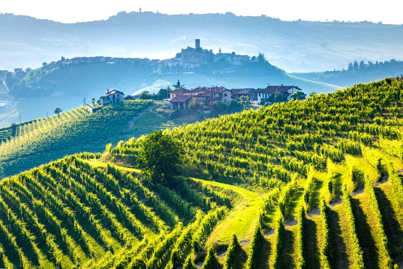Italian Florence: 12 Best Tuscany Wine Tours From: Florence, Siena, Rome