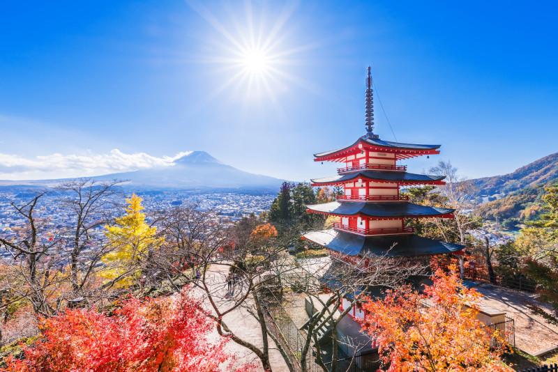Yamanashi excursion depuis Tokyo