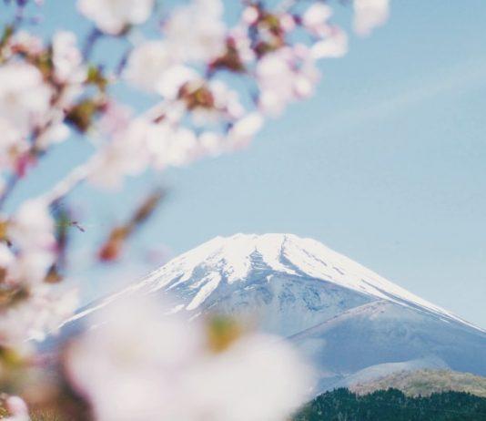 Mount Fuji Tours