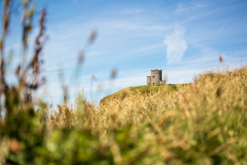 Cliffs of Moher Tours - What to see