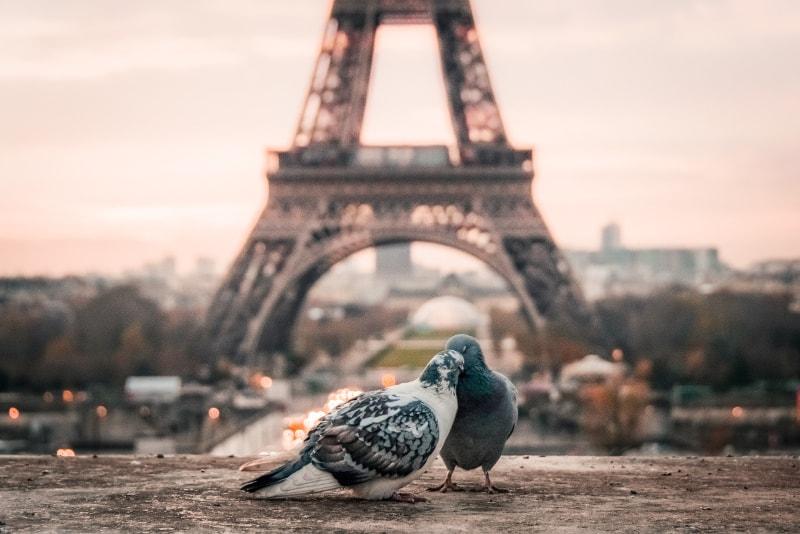 Torre Eiffel como reservar entradas.