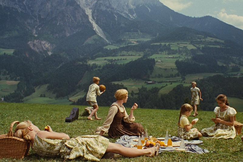 Werfen Picnic Meadow - Sound of Music Tour in Salzburg
