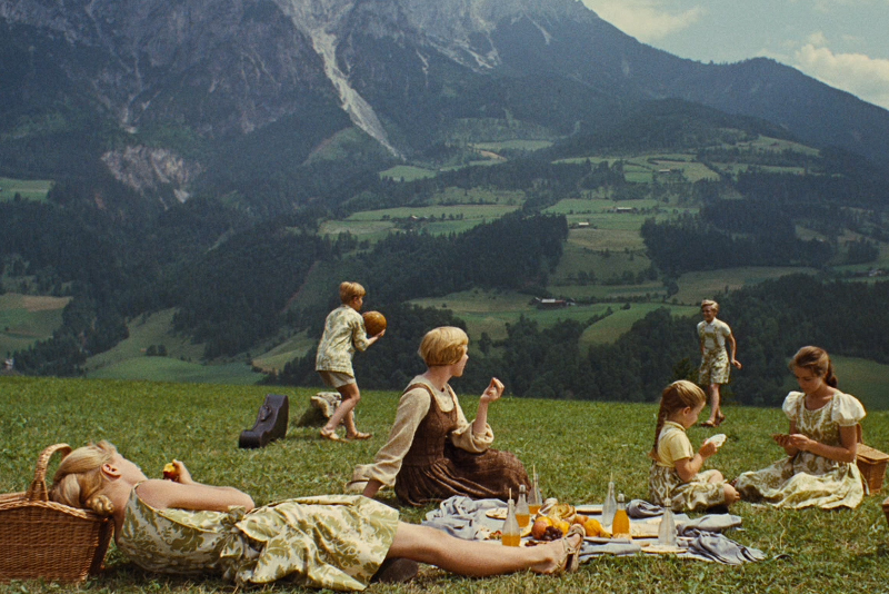 Werfen Picnic Meadow - Sound of Music Tour in Salzburg