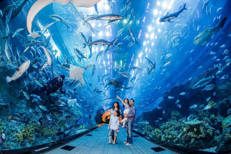 Dubai Aquarium & Underwater Zoo - Parques Temáticos em Dubai