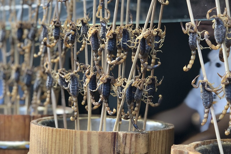 Insects as food - things to do in Shanghai