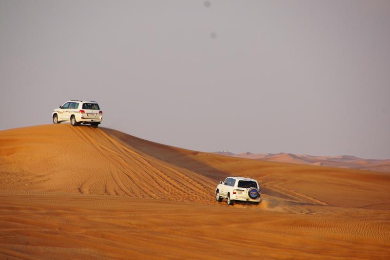Safari privado no deserto de Doha