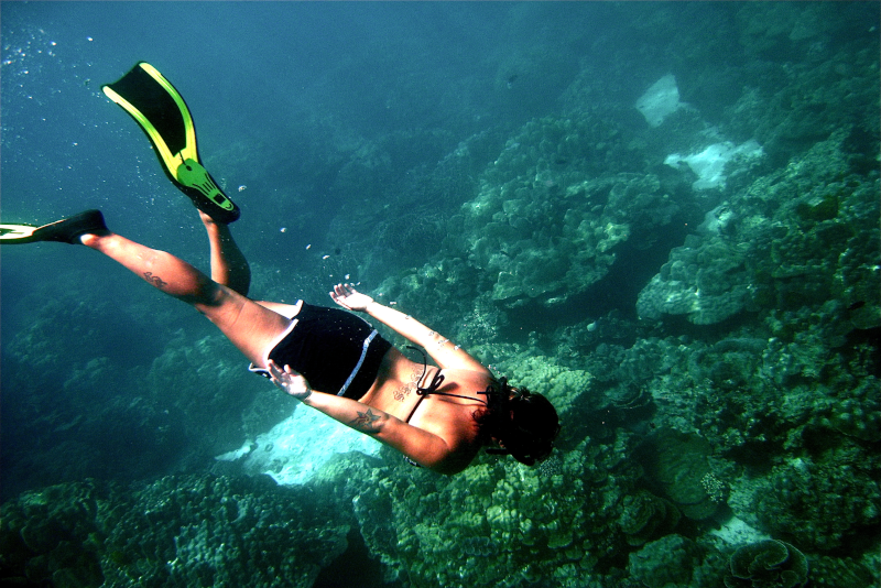 Snorkeling - Things To Do In Phuket