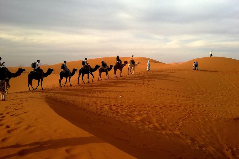 Safari en el desierto - Cosas que Hacer en una Escala en Doha (Catar)