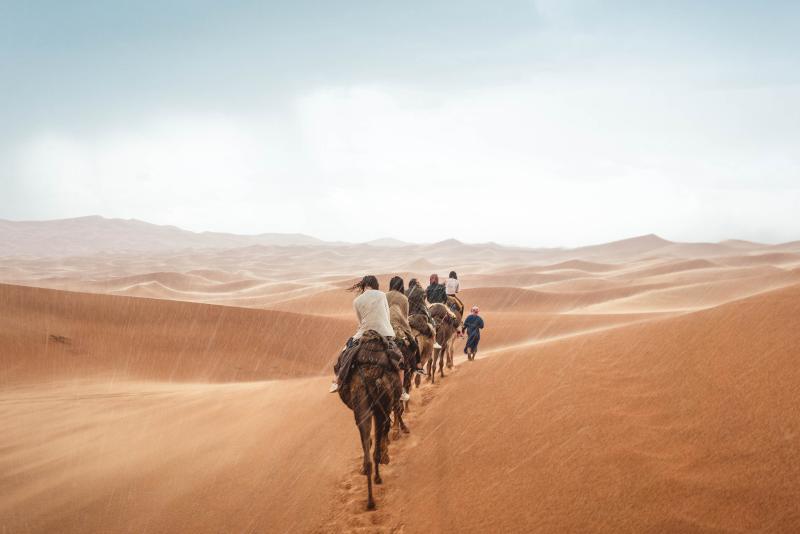 Passeio de camelo