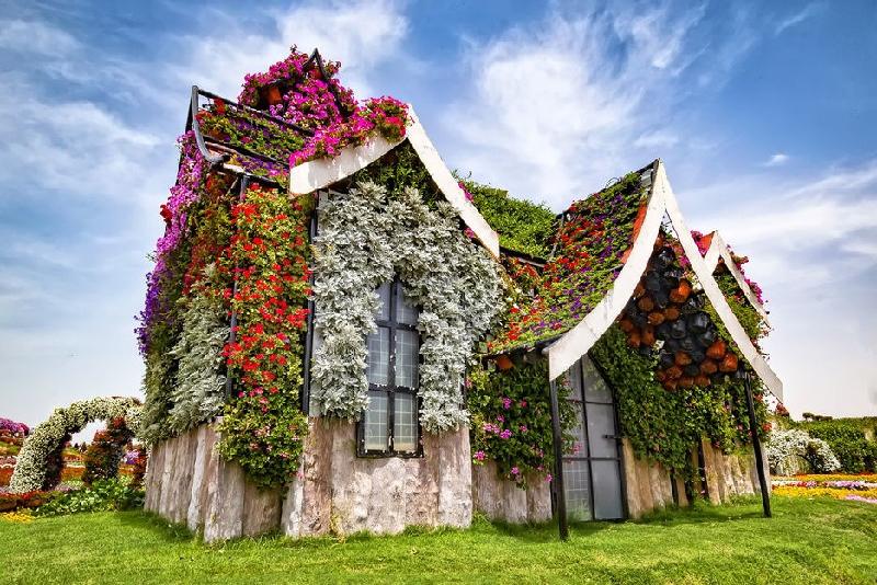Dubai Miracle Garden - Parques Temáticos em Dubai