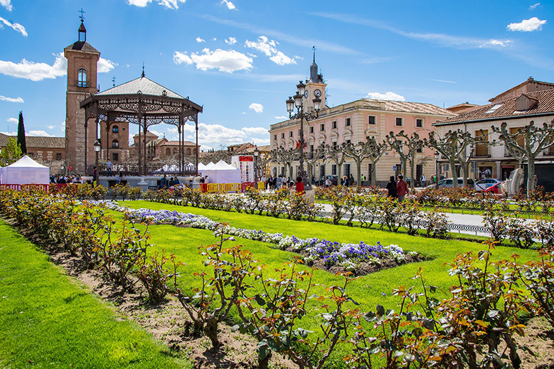 Alcalá de Henares - Day Trips from Madrid