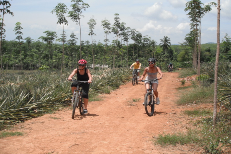 Bike Tour - Things To Do In Phuket