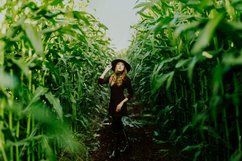 Maize Maze - excursiones de un día desde la ciudad de Nueva York