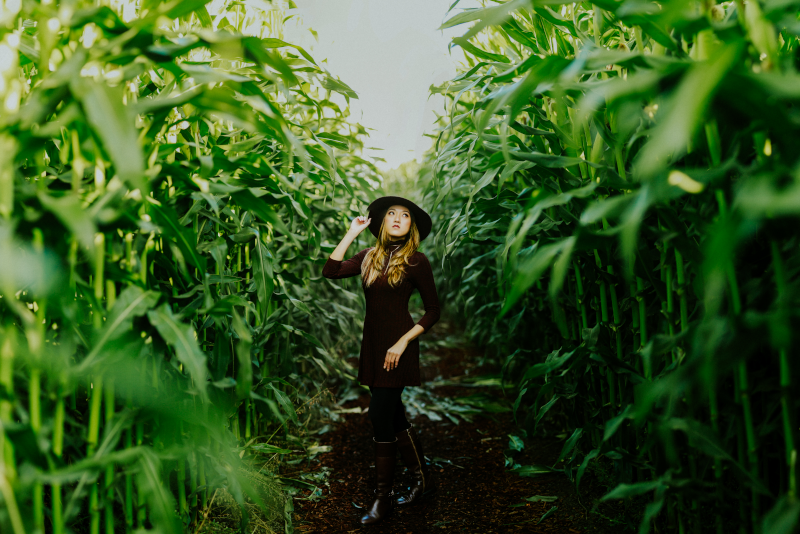 Maize Maze - day trips from New York City