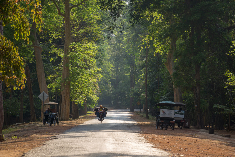 Angkor temples park - Angkor temples tours