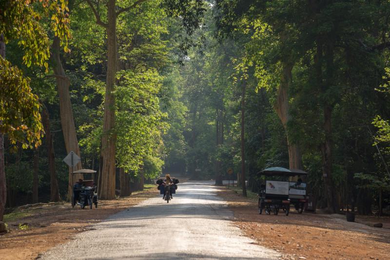 Angkor temples park - Angkor temples tours