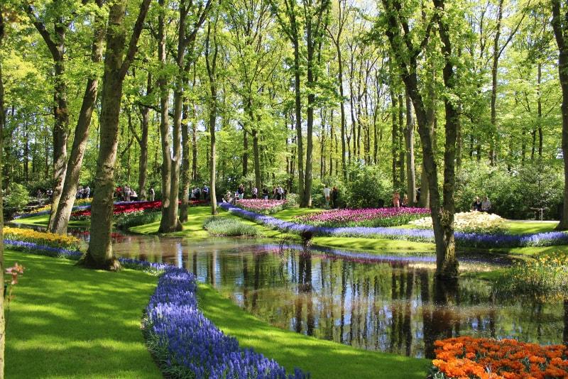 Keukenhof gardens's river