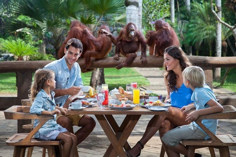 Bali Zoo, Bali, Indonesia - #12 best places to visit in South Bali