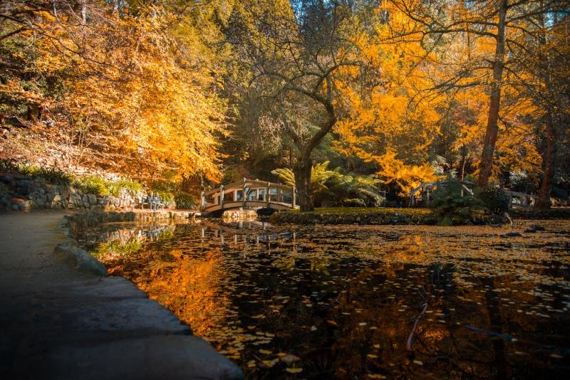 Tagesausflüge in die Alfred Nicholas Memorial Gardens ab Melbourne
