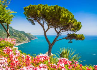 Best day trips from Naples