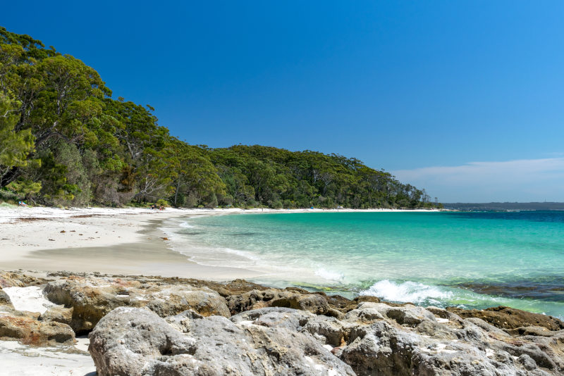Excursiones de un día a la bahía de Jervis desde Sydney