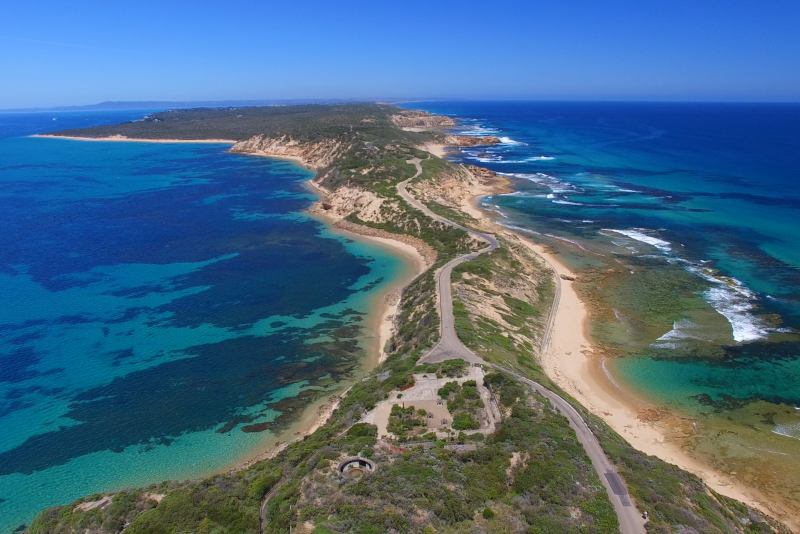 Mornington Peninsula day trips from Melbourne