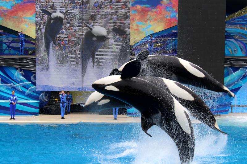SeaWorld San Diego # 9 parcs d'attractions en Californie