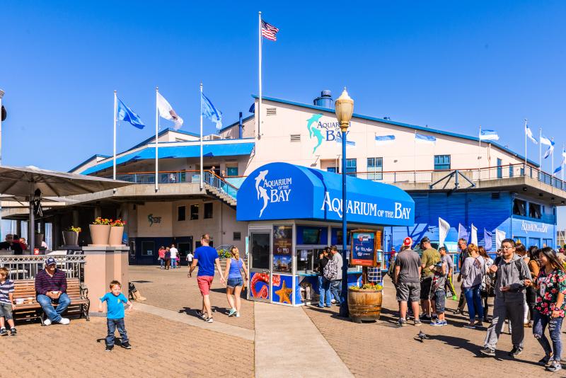 Aquarium of the Bay # 13 parcs d'attractions en Californie