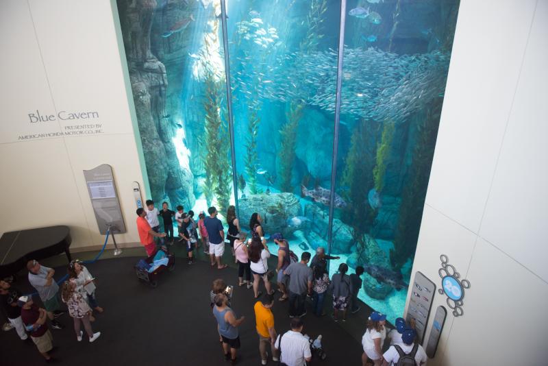 Aquarium of the Pacific # 24 parcs d'attractions en Californie
