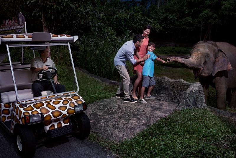 Night Safari - N ° 8 des meilleurs parcs d'attractions à Singapour