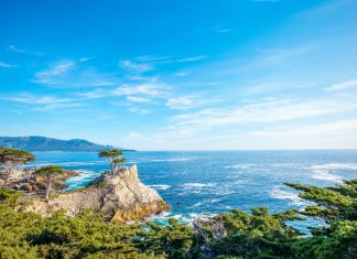 Best day trips from San Francisco