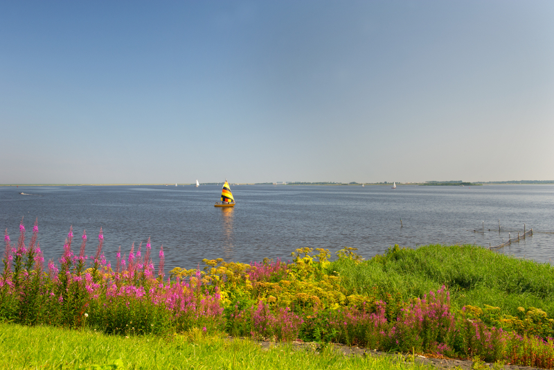 Lauwersmeer day trips from Amsterdam
