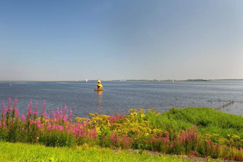 Gite di un giorno a Lauwersmeer da Amsterdam