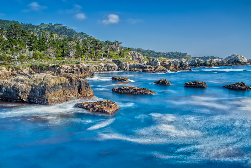 Point Lobos State Natural Reserve day trips from San Francisco
