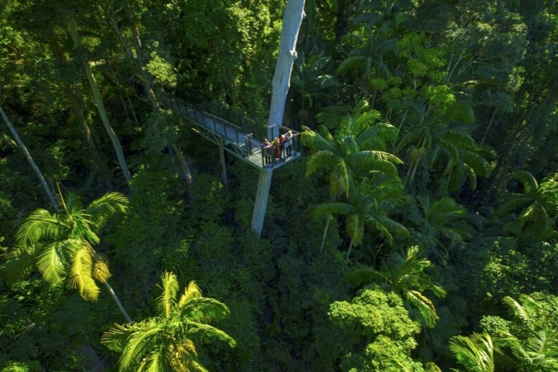 Tamborine Rainforest Skywalk - #17 Gold Coast theme parks