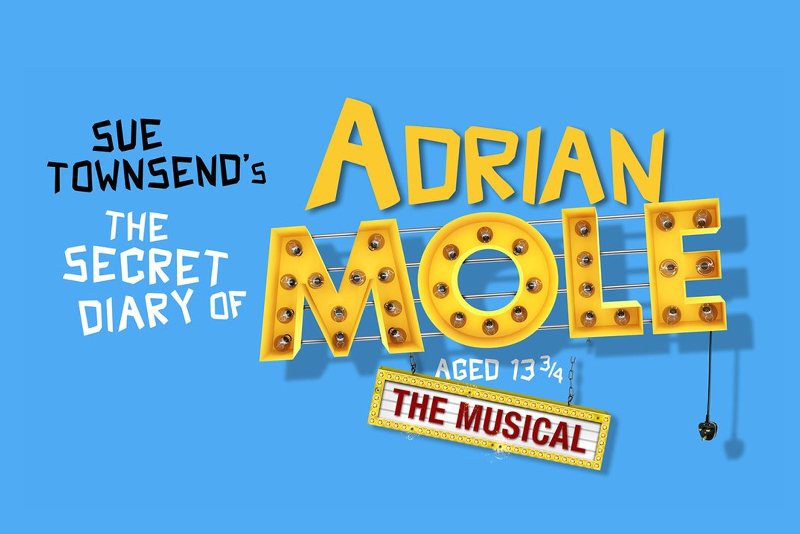 The Secret Diary of Adrian Mole aged 13 3/4 - Meilleures Comédies Musicales à voir à Londres en 2019/2020
