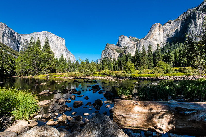 Yosemite National Park day trips from San Francisco