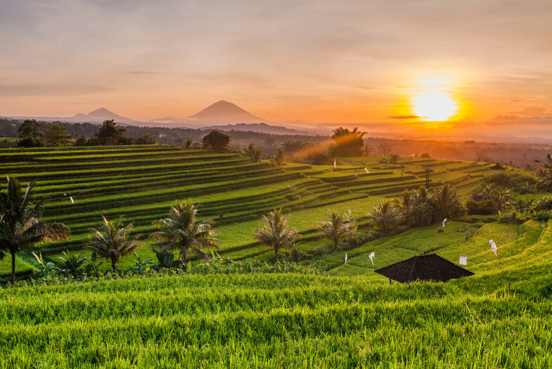 Bali Sacred Temples and Sunset Private Tour