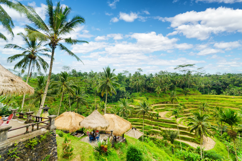 Carang Sari Village Cycling