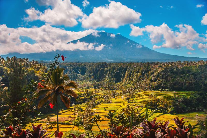 Kintamani Lake & Volcano Tour