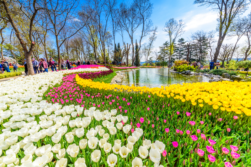 Emirgan Park day trips from Istanbul