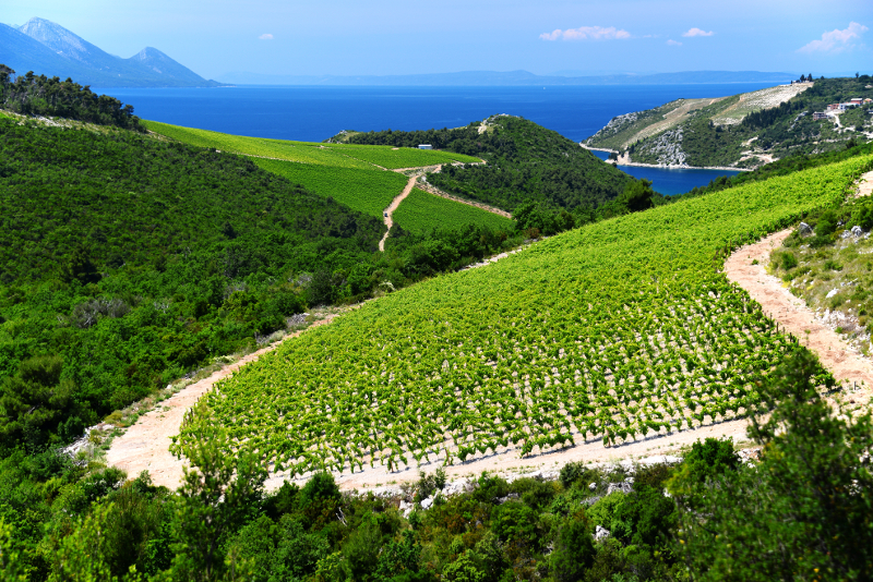 Konavle Valley day trips from Dubrovnik
