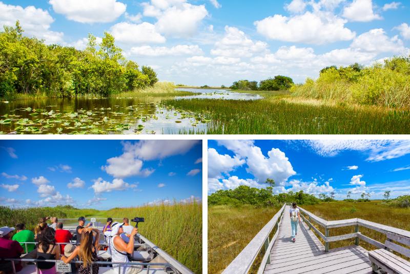 Orlando: tour de 2 horas en hidrodeslizador por los Everglades